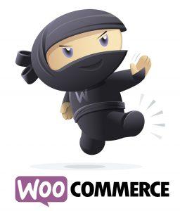 Sælg mere på nettet med en shop i WooCommerce. Guide til bedste webløsning Viborg.